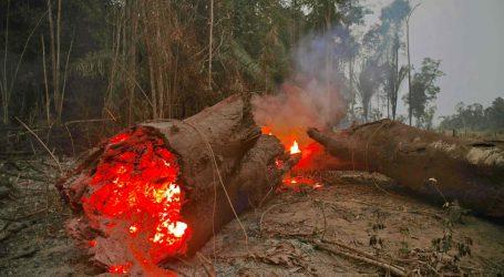 Αμαζόνιος: Τα μέτωπα της φωτιάς συνεχίζουν να αυξάνονται και να επεκτείνονται