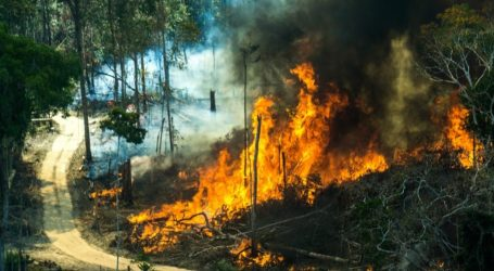 Υπ. Άμυνας Βραζιλίας: Δεν υπάρχει συνεργασία με τις ΗΠΑ για την κατάσβεση των πυρκαγιών