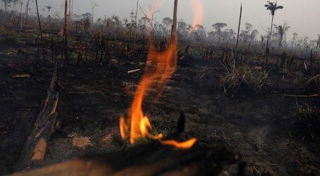 Παγκόσμια αγωνία – Εκατοντάδες νέες δασικές πυρκαγιές στην Αμαζονία (vids)