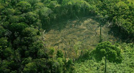 Βραζιλία: Η εκδάσωση του Αμαζονίου ξεπέρασε το 88% τον Ιούνιο
