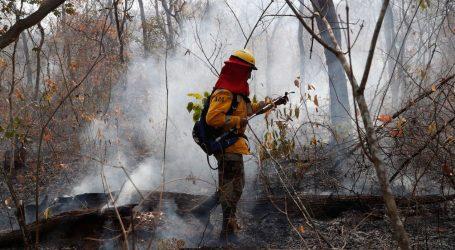 Βολιβία: Υπό έλεγχο οι πυρκαγιές – Πολύ αργά για τα ζώα