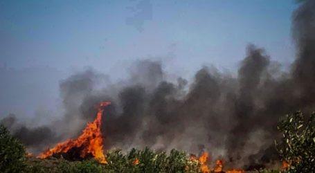 Σε ύφεση η πυρκαγιά στην Ελαφόνησο – 63 πυρκαγιές τις τελευταίες 24 ώρες σε όλη τη χώρα