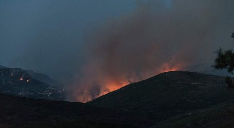 Φωτιά σε δασική έκταση στην Ανατολική Μάνη
