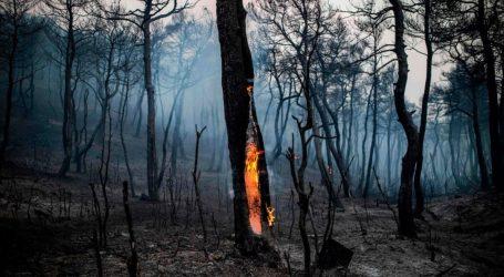[UPD] Εύβοια: Συνεχίζεται η μάχη της κατάσβεσης της πυρκαγιάς – Την πιθανότητα του εμπρησμού εξετάζει η Πυροσβεστική (vids)