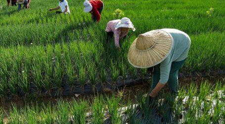 Κίνα: Κατά 40 φορές αυξήθηκε το κατά κεφαλήν εισόδημα στις αγροτικές περιοχές