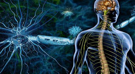 Η επιστήμη ετοιμάζει λύσεις για τη θεραπεία της ΣΚΠ με αυτόλογες μεταμοσχεύσεις βλαστοκυττάρων