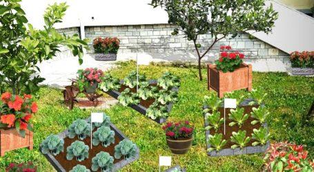 Χανιά: Σεμινάριο περιφερειακού δικτύου Περιβαλλοντικής Εκπαίδευσης- Ένας κήπος στο σχολείο μου