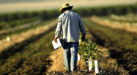 ΟΠΕΚΕΠΕ: Λήγει η προθεσμία υποβολής των επιδοτήσεων των αγροτών