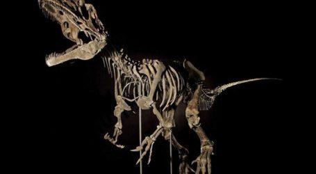 Σκελετός δεινοσαύρου πουλήθηκε σε ιδιώτη αντί 2,3 εκατ. δολ. σε δημοπρασία