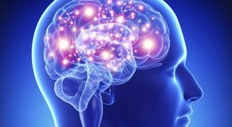Διέγερση με ηλεκτρομαγνητικούς παλμούς περιοχής του εγκεφάλου που συνδέεται με τη μνήμη