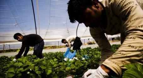 Καθορίστηκαν οι άδειες διαμονής για τους εργάτες γης