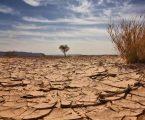 ΟΗΕ: Με «ερημοποίηση» κινδυνεύει το ένα τρίτο των ελληνικών εδαφών