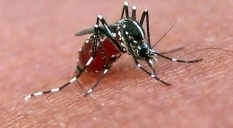 Εντατικοποίηση των μέτρων προστασίας από τα κουνούπια