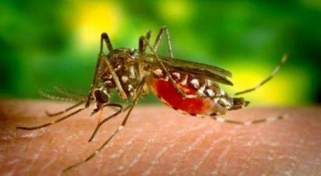 ΚΕΕΛΠΝΟ: Στους 21 οι θάνατοι από τον ιό του Δυτικού Νείλου