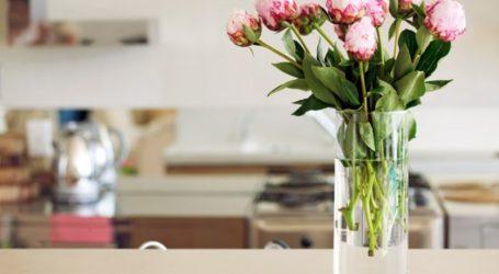 Τα λουλούδια στο σπίτι μειώνουν τα επίπεδα πόνου και στρες