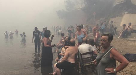 Ελληνική υπηκοότητα σε τρεις μετανάστες ψαράδες που έσωσαν δεκάδες πυρόπληκτους