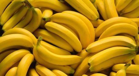 Κολομβία: Εντόπισαν εστία μύκητα που καταστρέφει τις φυτείες μπανάνας