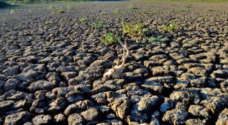 ΕΕ: Τα κράτη-μέλη λαμβάνουν μέτρα στήριξης των γεωργών για την ξηρασία