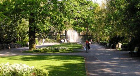 Πρόγραμμα του δήμου Αθηναίων για τη διατήρηση του πρασίνου στους δρόμους