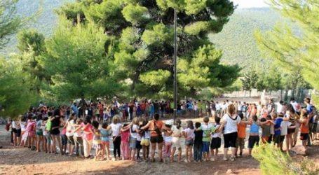 ΟΑΕΔ: Aπό σήμερα οι αιτήσεις για τη συμμετοχή σε παιδικές κατασκηνώσεις