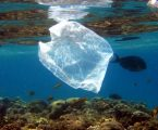 G20: Συμφωνία για μείωση των πλαστικών απορριμμάτων στους ωκεανούς