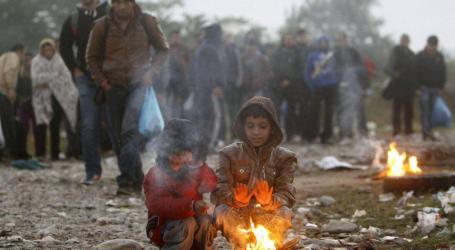 Ανησυχία για τα βίαια περιστατικά στα Βρασνά εκφράζει ο Διεθνής Οργανισμός Μετανάστευσης