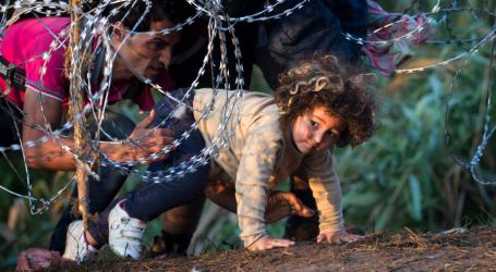 Βίκστρομ: Όλες οι χώρες πρέπει να δέχονται πρόσφυγες