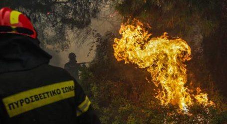Υπό μερικό έλεγχο η φωτιά στις Μαλάδες Ηρακλείου