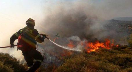 Πυρκαγιά σε δασική περιοχή στις Ερυθρές του δήμου Μάνδρας