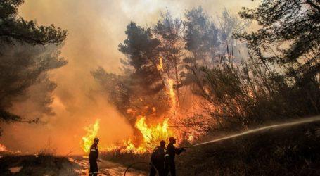 Υψηλός ο κίνδυνος πυρκαγιάς σε πολλές περιοχές της χώρας