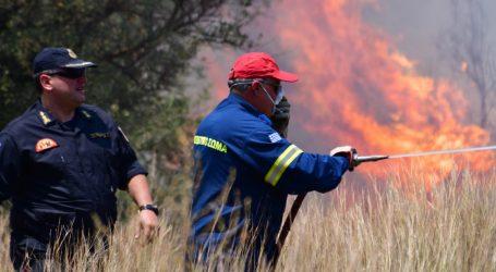 Σε εξέλιξη πυρκαγιά στα Λαγκαδάκια Ζακύνθου