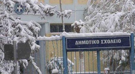 Που θα παραμείνουν κλειστά τα σχολεία λόγω κακοκαιρίας