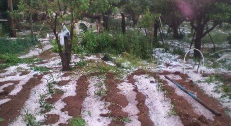 Από σήμερα ξεκινούν οι έλεγχοι από τον ΕΛΓΑ για τις ζημιές από το χαλάζι σε Ροδόπη, Πήλιο και Κορινθία