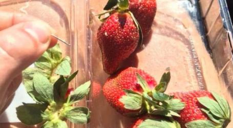 Αυστραλία: Συναγερμός στις αρχές καθώς φράουλες με βελόνες εντοπίστηκαν σε όλη τη χώρα