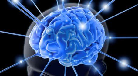 Πόσα λεπτά χρειάζεται ο εγκέφαλος για να αναγνωρίσει έναν οικείο ήχο; Νέα ερευνητικά δεδομένα