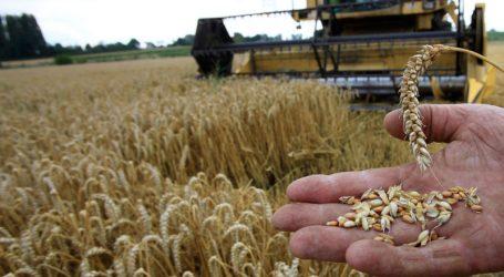 Η χαμηλότερη παραγωγή σιτηρών στην ΕΕ – Τι ισχύει σε άλλα προϊόντα