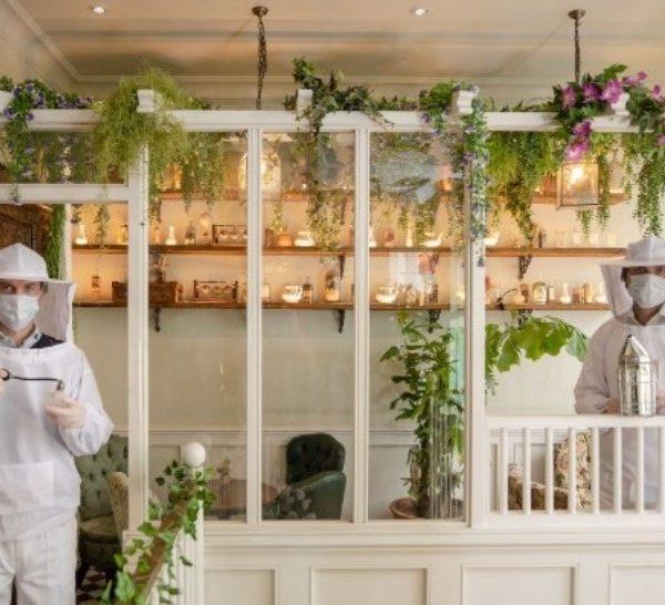 Λονδίνο: Σε μπαρ οι εργαζόμενοι υποδέχονται τους θαμώνες με στολές μελισσοκόμων