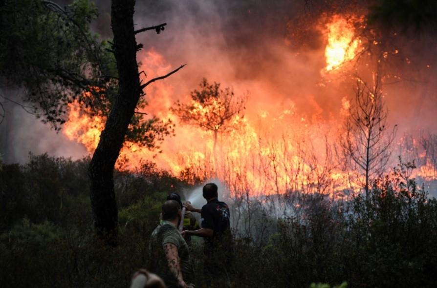 Πυροσβεστική: 63 πυρκαγιές σε όλη την Ελλάδα το τελευταίο 24ωρο