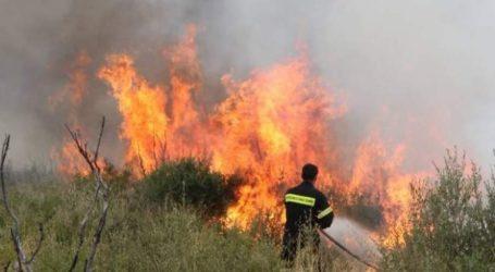 Σε εξέλιξη πυρκαγιά στη Νέα Μάκρη