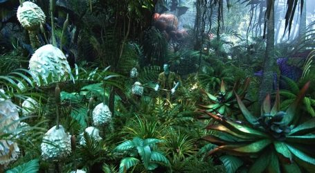 Όταν ο κινηματογράφος προειδοποιούσε για την καταστροφή του Αμαζόνιου