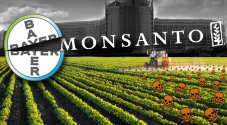 Καταδίκη Monsanto: «Ιστορική απόφαση» – Ικανοποίηση της Γαλλίας και των πολέμιων της γλυφοσάτης