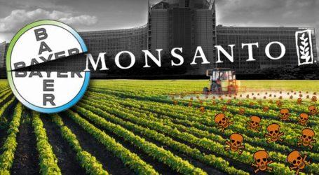 ΗΠΑ: Αποζημιώσεις 290 εκατ. δολ. επιβλήθηκε να καταβάλλει η Monsanto για το καρκινόγονο ζιζανιοκτόνο Roundup
