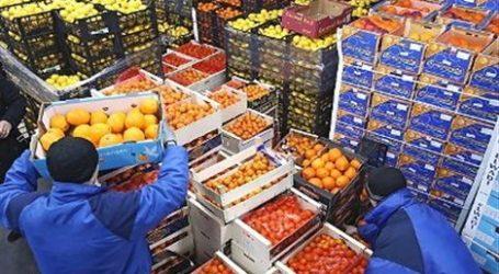 Τόνοι τροφίμων από την Τουρκία κατασχέθηκαν στον Έβρο