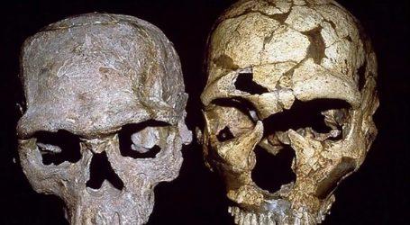 Κρανίο 210.000 ετών από την Ελλάδα το αρχαιότερο δείγμα Homo sapiens