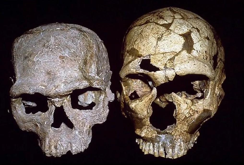 Που χρονολογείται από τις μεθόδους απολιθωμάτων