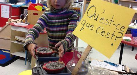 Γαλλία: Από το 2019 το σχολείο θα είναι υποχρεωτικό από την ηλικία των 3 ετών