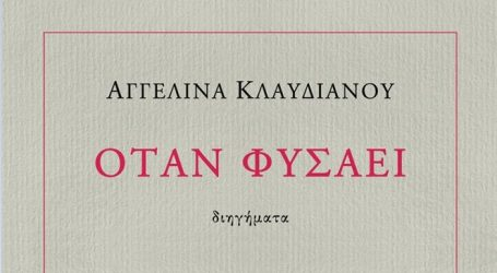 """Στα βιβλιοπωλεία το βιβλίο της Αγγελίνας Κλαυδιανού """"Όταν φυσάει"""" από τις εκδόσεις Στερέωμα"""