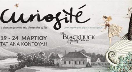 Σήμερα η γκαλερί του Black Duck εγκαινιάζει την έκθεση της Τατιάνας Κοντούλη με τίτλο Curiosité
