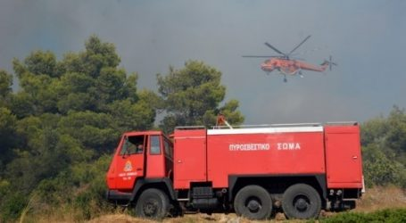 Υπό μερικό έλεγχο τέθηκε η πυρκαγιά στο δήμο Φυλής Αττικής