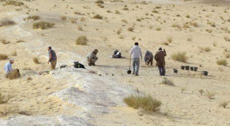 Ανατροπή των ανθρωπολογικών δεδομένων στη Σαουδική Αραβία: Βρέθηκε απολίθωμα του Homo sapiens ηλικίας 90.000 ετών